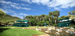 On the tee: Nedbank Golf Challenge
